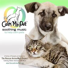 Picture of Calm My Pet CD: Music for Relaxation with Pets